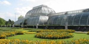 Kew Gardens Chauffeur Tours